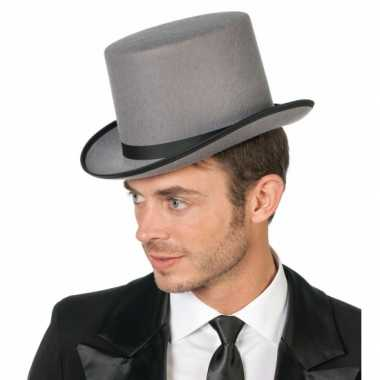 Originele hoge hoed grijs volwassenen carnavalskleding