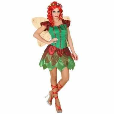 Originele toverfee/elfen carnavalskleding verkleed carnavalskleding d