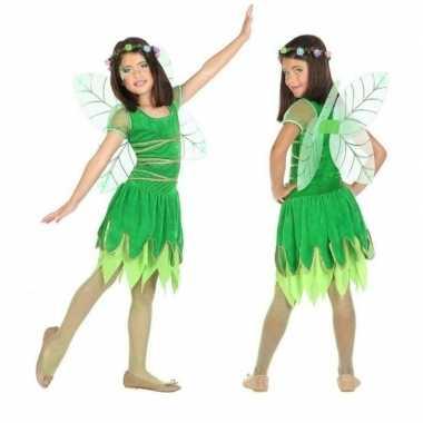 Originele toverfee/elfje fay verkleed carnavalskleding/carnavalskledi